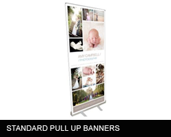 https://www.printitfast.com.au/images/products_gallery_images/pullupbanner.png