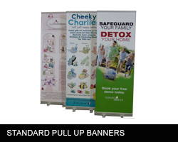 https://www.printitfast.com.au/images/products_gallery_images/pullupbanner3.png