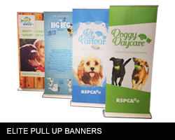 https://www.printitfast.com.au/images/products_gallery_images/pullupbanner4.png